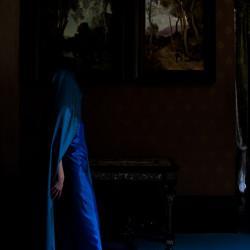 Blue Veil and Shadow I. 40x26cm - 2011